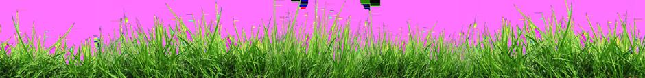 Bio FarmDevos